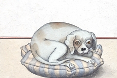 chien-craintif-2007-michel-lablais