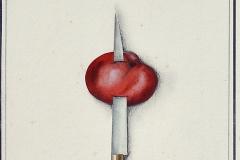 la-tomate-poignardee-2013-michel-lablais