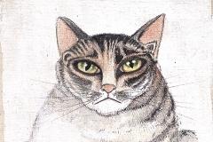 chat-griffu-87-michel-lablais